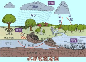 Water Cycle in Chinese learning